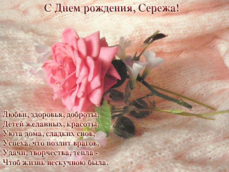Поздравление с днем рождения сергея в стихах прикольные 26